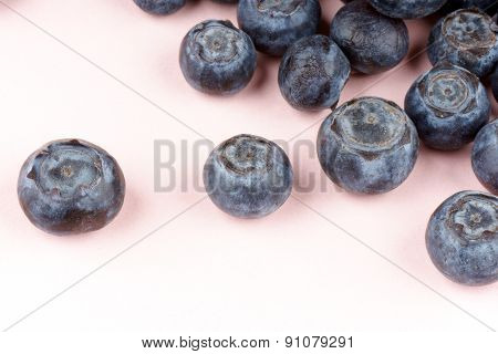 Blueberries Over Pink