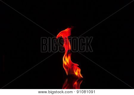 Flames Isolated