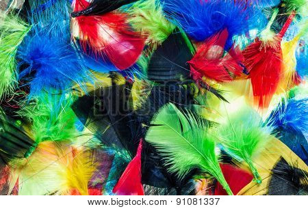 Mixture Color Feathers
