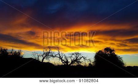 Magic sky in sunset