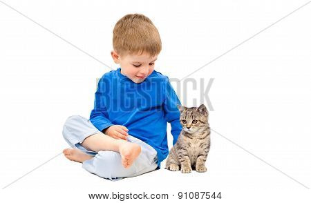 Boy and kitten Scottish Straight