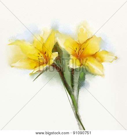 Watercolor Painting Yellow Lilies Flower
