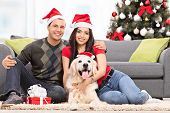 stock photo of christmas dog  - Young couple celebrating Christmas with their dog seated on the floor next to a modern sofa at their home - JPG