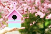 picture of nesting box  - Decorative nesting box in female hands on blooming garden background - JPG