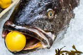foto of fish skin  - close up of a raw meagre fish with a lemon in the mouth - JPG
