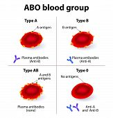 image of hemoglobin  - ABO Blood groups - JPG