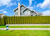 pic of yard sale  - Beautiful house behind green hedge fence with empty for sale - JPG