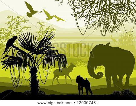 Beauty Of Nature With Wild Animals (elephant, Monkey, Antelope, Parrot, Bird, Horse, Heron)