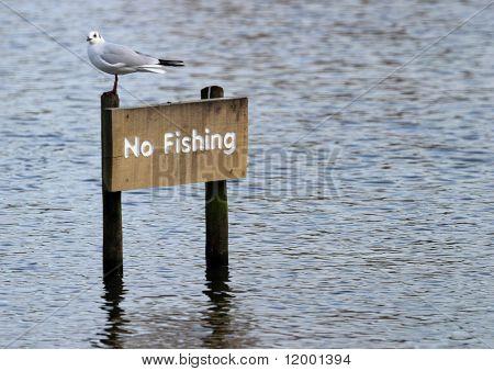 Signo, No pesca