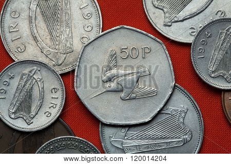 Coins of Ireland. Woodcock depicted in the Irish 50 pence coin.