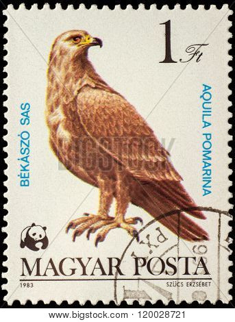 Lesser Spotted Eagle (aquila Pomarina) On Postage Stamp
