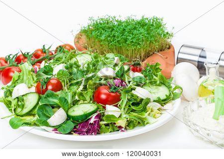 Mixed Salad, Cress, Dip, Spices