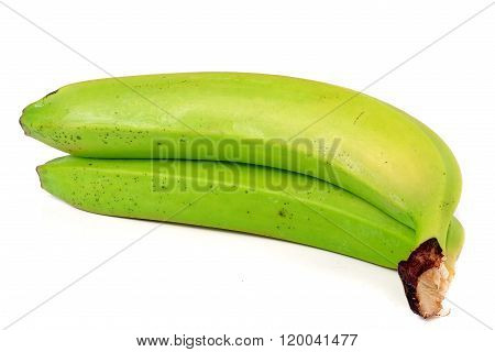 Two green unripe bananas isolated on white background
