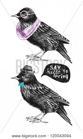 dressed up hand drawn starling couple