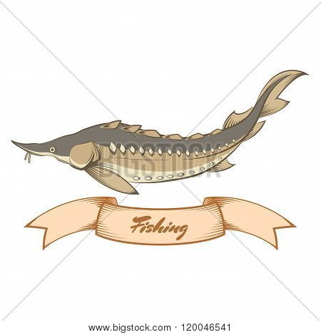Sturgeon fishing banner