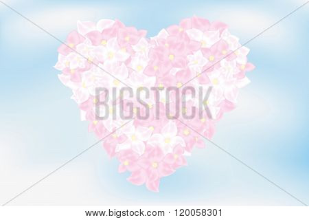 Heart Of Hortensia Flowers