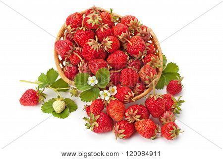 Sweet, Fragrant Strawberries In A Wicker Basket