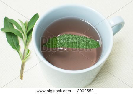 Black Sage Tea