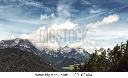 Breathtaking view of snow-capped rocky mountain vista, with fir trees and grassy field in foregound beneath blue sky with white clouds