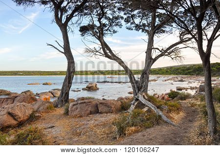 Tranquil Bunker Bay: Western Australia