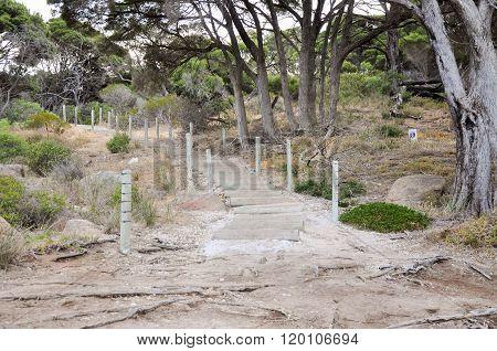 Shelley Cove: Granite Path