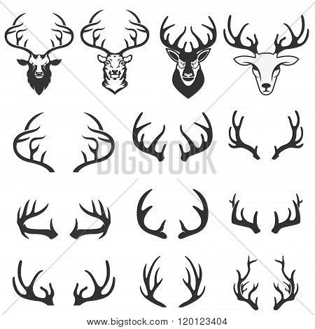 Deer Logo Design Elements. Set Of Deer Horns