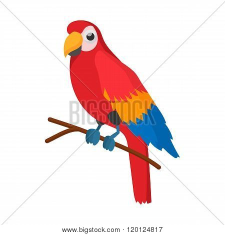 Red brazil parrot icon, cartoon style