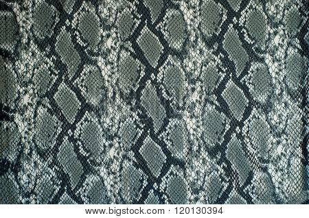 Grey Fabric With Snake Print