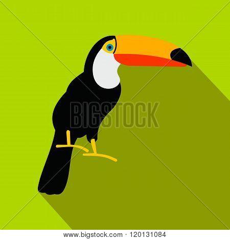 Toucan icon, flat style