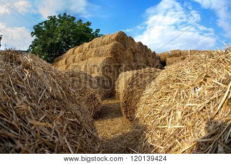 Storage Of Hay