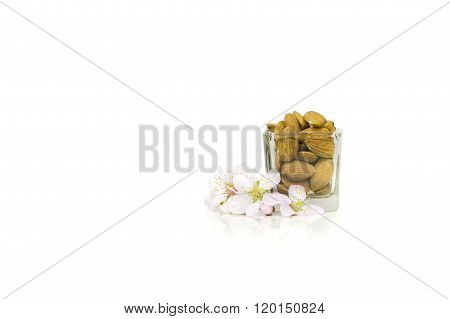 Isolated raw almonds