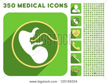 Embryo Uterus Icon and Medical Longshadow Icon Set