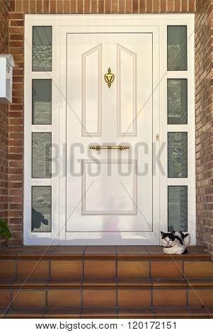 Almudevar (aragon, Spain): Door And Cat