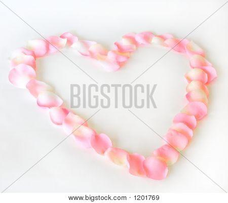 Corazón de pétalo 1 F