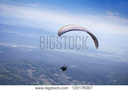 Paraglider Flying