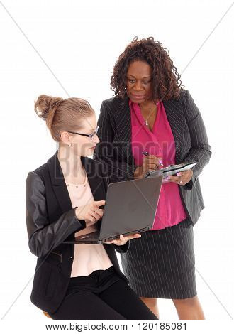 Two Business Woman Working Together.