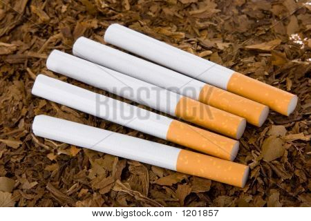 Tobacco And Cigarettes 3
