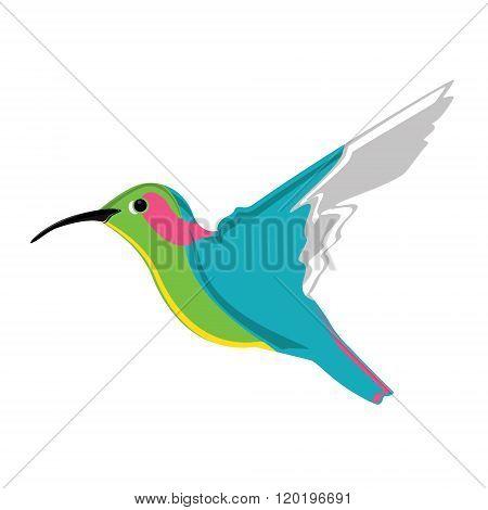 Small Exotic Hummingbird