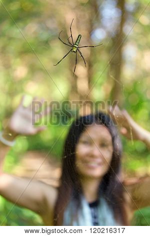 Woman watching a tropical golden orb spider, Thailand