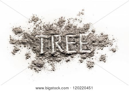 Word Tree Written In Ash