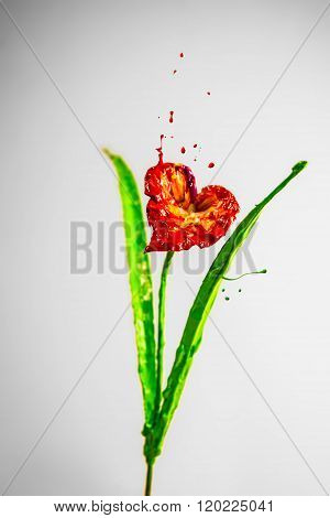 Beautiful Lily Made Of Red And Green Paint