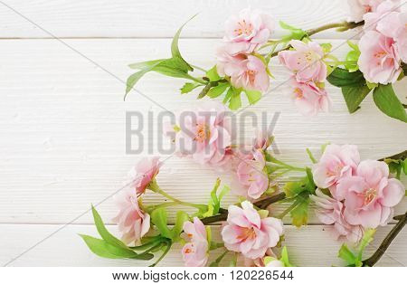 pink spring flowers on wooden background,copy space