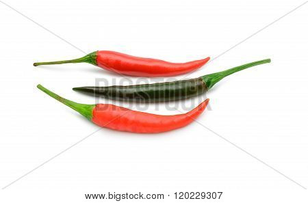 Chili Spur Pepper