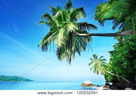 early morning, Seychelles beach