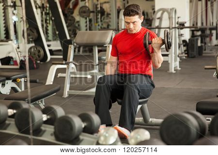 Man Doing Bicep Curls In Front Of A Mirror