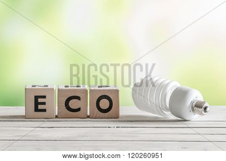 Big Eco Bulp On A Wooden Table