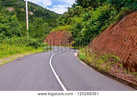 Winding Road Through Dominica