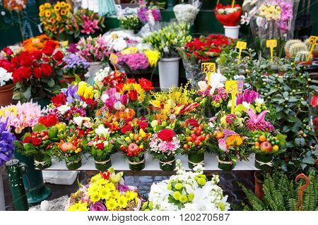 flowers for sale at a Italian flower market in Rome