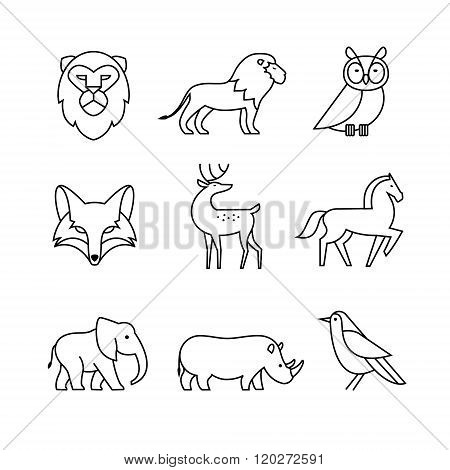Popular wild life animals thin line art icons set