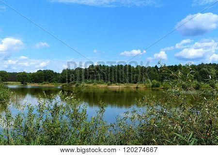 Reservoir in Belovezhsky wood